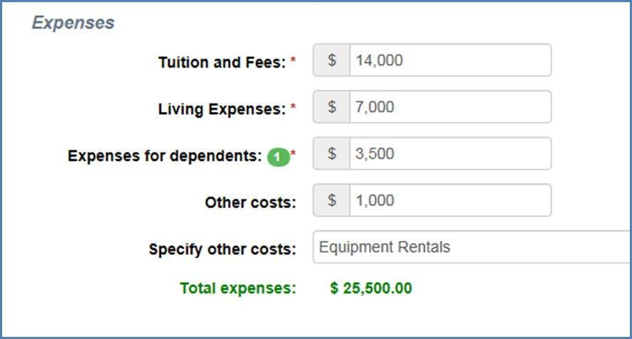 Expenses Section on Financial Information Page